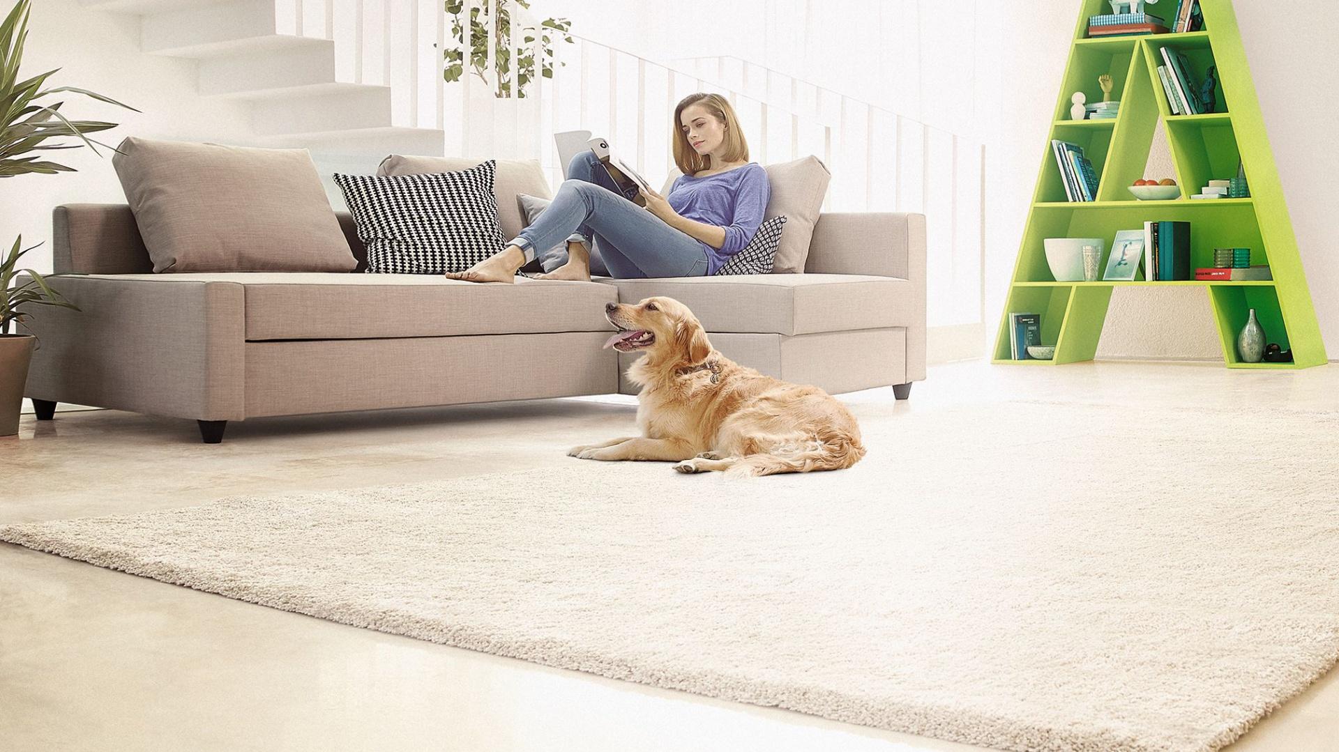 Sprzątanie domów, w których mieszkają psy lub koty stanie się zdecydowanie szybsze i skuteczniejsze z odpowiednimi odkurzaczami. Fot. Philips