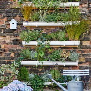 Marzenia o prawdziwej bliskości z zielenią mogą się ziścić dzięki tak zwanym pionowym ogrodom umieszczanym na balkonach lub tarasach. Fot. Bosch