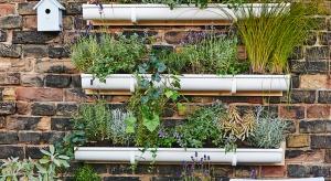 Marzenia o prawdziwej bliskości z zielenią mogą się ziścić dzięki tak zwanym pionowym ogrodom umieszczanym na balkonach lub tarasach.