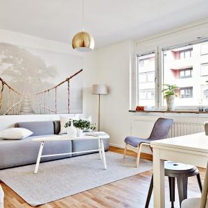 Okna są nieprzesłonięte żadnymi tekstyliami - zabieg typowy dla stylistyki skandynawskiej sprawił, że wnętrze nabrało światła. Fot. Svenskfast