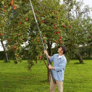 W ogrodach w stylu wiejskim pełno drzew i krzewów z owocami, do których zbierania idealnie się przyda zrywaczka owoców. Fot. Gardena