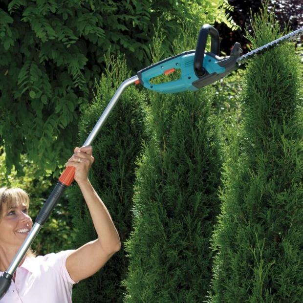 Wymarzony ogród - eksperci radzą