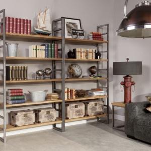 Regał i lampa w laboratoryjnym stylu nawiązują do lat 20. a postarzane dodatki dopełniają całości aranżacji. Fot. Inne Meble