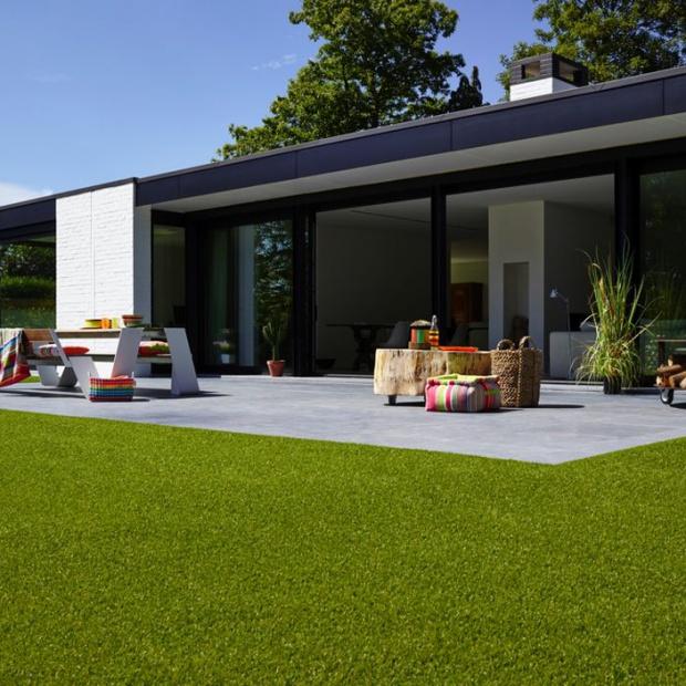 Zadbany ogród: postaw na trawnik, którego nie trzeba kosić