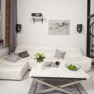 Salon został zaprojektowany jako przestrzeń do relaksu. Można w nim odpocząć, obejrzeć film (nad kanapą jest zainstalowany projektor) czy poczytać książkę. Projekt: Szymon Chudy. Fot. Bartosz Jarosz
