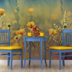 Fototapeta z żółtymi kwiatami porastającymi łąkę. Fot. Minka