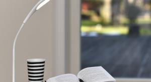 Niezbędnym elementem kącika do nauki jest odpowiednie oświetlenie. Jego uzupełnieniem będzie odpowiednia lampka biurkowa.