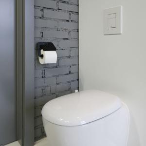 Projektanci zadbali o wszystkie detale - nawet podajnik do papieru łączy się kolorystycznie z łazienką. Proj. wnętrza Monika i Adam Bronikowscy, Hola Design. Fot. Bartosz Jarosz.