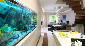 Bogato wyposażone, designerskie i eleganckie akwarium to nowy trend w aranżacji wnętrz, który powraca w nowej odsłonie