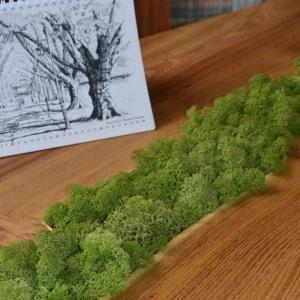 Stolik z mchem projektu Malita Just Wood. Fot. materiały prasowe.