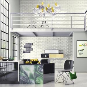 Charakterystyczne odcienie szarości i złamanych bieli na ścianach łączone są z fakturą cegły czy betonu oraz fluorescencyjnymi dodatkami o charakterystycznym niebieskawym, zielonkawym czy żółtym zabarwieniu. Dzięki temu surowe z zasady wnętrza loftowe zyskują odrobinę cieplejszy i przytulniejszy ton.