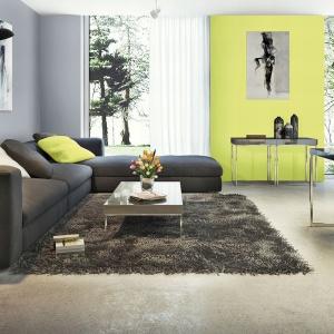 Szkło, metal i betonowa posadzka czasami wymagają orzeźwienia. Zastosowanie limonki zdecydowanie podkreśla i nadaje dynamiki wnętrzu.