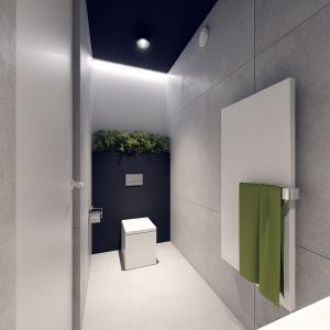 Szarości, biel i czerń z nutą zieleni sprawiają, że łazienka wygląda bardzo nowocześnie.
