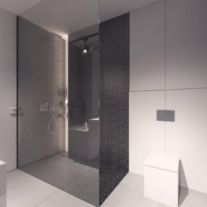 Przeszklona strefa prysznica z czarną mozaiką.