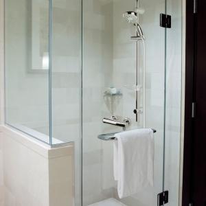 Zestaw prysznicowy Varese. Fot. Ferro