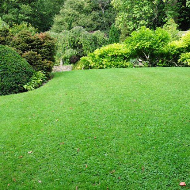 Prace w ogrodzie: konserwujemy system nawadniania