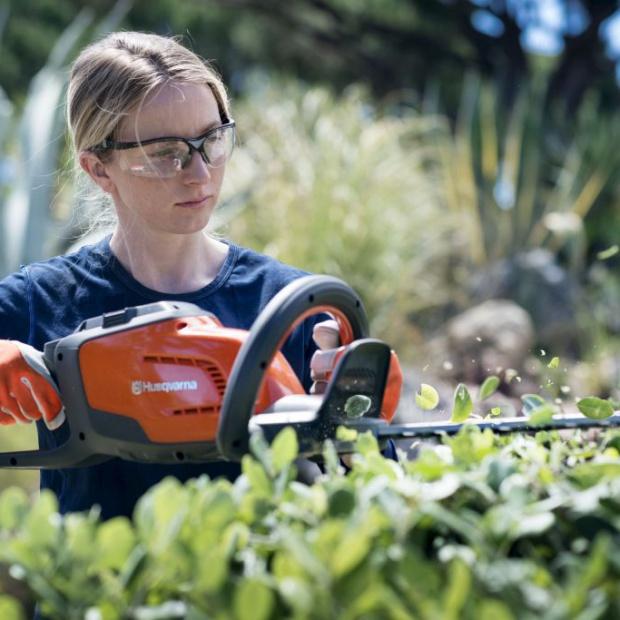 Pielęgnacja ogrodu przed zimą – ostatnie strzyżenie żywopłotu