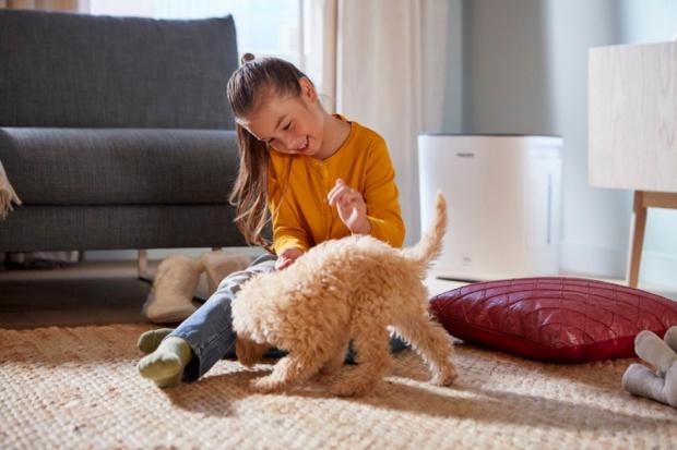 Nawilżacz powietrza bazujący na naturalnych metodach nawilżania zminimalizuje problemy zdrowotne powodowane przez suche powietrze oraz sprawi, że w pomieszczeniu będzie się komfortowo oddychało i spało Tobie i Twojemu dziecku.