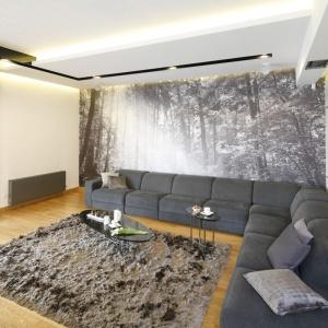 Ścianę za kanapą można ozdobić piękną fototapetą. Projekt: Monika i Adam Bronikowscy. Fot. Bartosz Jarosz
