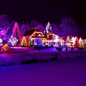 Świecące wieczorem światełka, rozwieszone na obsypanych śniegiem drzewach, będą tworzyć tajemniczą i bajeczną scenerię, a dodatkowo rozświetlą drogę do domu. Fot. Shutterstock