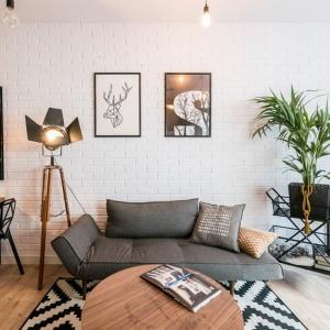 Apartament pokazowy Nowa Papiernia Ultra Nova aranżacja dla singla. Fot. Nowa Papiernia