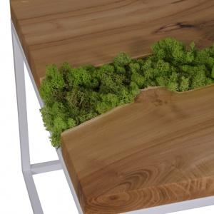 Stolik z mchem. Fot. Malita Just Wood