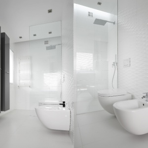 Prysznic bez brodzika. Projekt: Katarzyna Mikulska-Sękalska. Fot. Bartosz Jarosz
