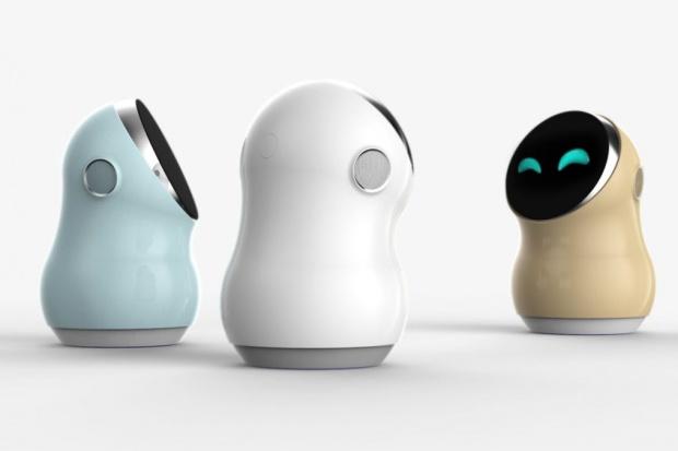 W trakcie tegorocznej edycji Innofest po raz pierwszy zobaczymy domowego Hub Robot, który zarządza pracą urządzeń gospodarstwa domowego i pełni funkcję inteligentnego centrum powiadomień.