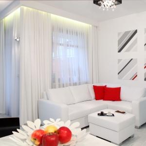 Białe wnętrze: ciekawe propozycje na pokój dzienny. Projekt: Michał Mikołajczak. Fot. Monika Filipiuk-Obałek
