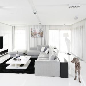 Białe wnętrze: ciekawe propozycje na pokój dzienny. Projekt: Małgorzata Muc, Joanna Scott. Fot. Bartosz Jarosz