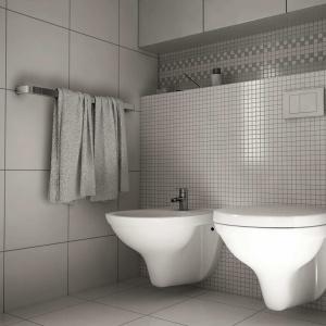 Oszczędzanie wody w łazience. Oszczędny system spłukiwania. Fot. Grupa Armatura