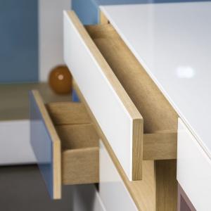 Nowa kolekcja Pfleiderer obejmuje szeroki wachlarz płyt drewnopochodnych o różnych zastosowaniach i aż 360 dekorów, które dostępne są na całym świecie - w większości w jednolitej kolorystyce. Fot. Pfleiderer