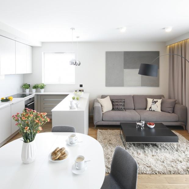 Mały salon. 20 propozycji z polskich domów