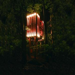4 Tree House - Walkers Point, Kanada. Fot. Łukasz Kos.