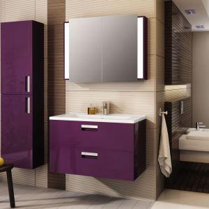 Szafka pod umywalkę, model Vigo firmy Devo, www.devo.pl. Fot. Devo