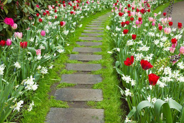 Pielęgnacja ogrodu - zaplanuj prace na początek maja