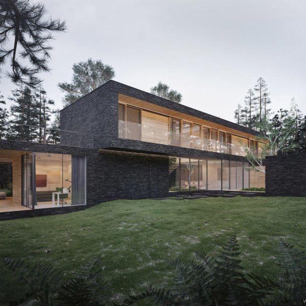 Dom w lesie. Zobacz niesamowity projekt