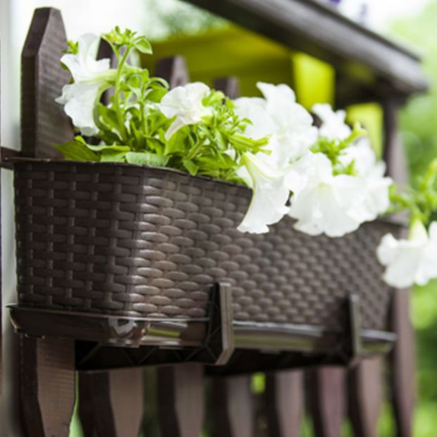 Wiosna na balkonie - posadź kwiaty w doniczkach