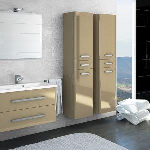 Meble do łazienki Danubio firmy Devo, www.devo.pl. Fot. Devo