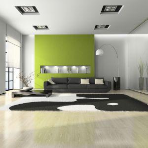 Zieleń z powodzeniem można zastosować na ścianie, gdyż ten kolor działa kojąco na nasz wzrok. Fot. Lakma Sat