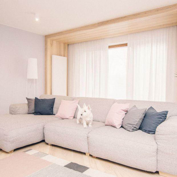 Piękny, jasny apartament - zobacz projekt dla rodziny