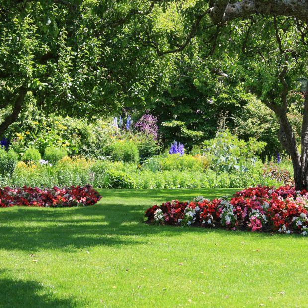 Zaplanuj ogród marzeń - porady profesjonalisty