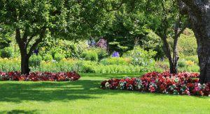 Planowanie nowego ogrodu czy ponowne oswajanie przestrzeni istniejącej już zieleni jest pracą przyjemną i twórczą, dzięki czemu każdy może wykreować swój własny ogród marzeń – samodzielnie lub korzystając z fachowej pomocy architekta ziel