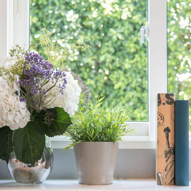 Okna pełne dekoracji. Jak efektywnie przyozdobić parapet?
