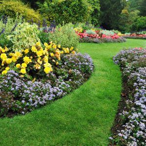 Pielęgnacja ogrodu w maju i czerwcu. Fot. Shutterstock