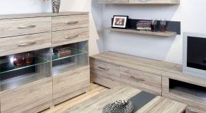 Trend na minimalistyczne formy od dawna cieszy się niesłabnącym zainteresowaniem, a mieszkania utrzymane w tej stylistyce uchodzą za nowoczesne i eleganckie.
