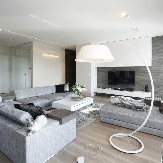 Jasny salon - 15 projektów architektów