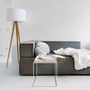 Modna, szara kanapa oraz ciekawa lampa dodają wnętrzu uroku. Fot. Stanisław Zajączkowski / Zajaczkowski Photography