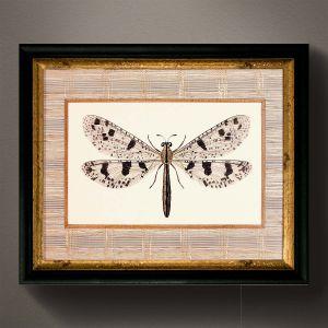 Obraz z kolekcji LIBELLULA niczym strona z podręcznika botaniki w stylowej oprawie. 470 zł. Fot. AlmiDécor