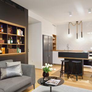 Nowoczesne mieszkanie. Projekt: GAO arhitekti. Zdjęcia: Miran Kambič